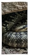 Northern Black-tailed Rattlesnake 2 Beach Towel