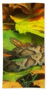 Northern Copperhead Camouflaged Beach Towel