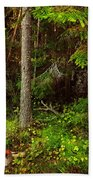 Northern Forest 1 Beach Towel
