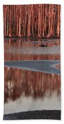 Northshore Cypress Beach Towel