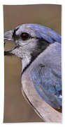 Nutty Bluejay Beach Towel