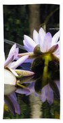 Nymphaea Colorata. Water Lilies Beach Towel