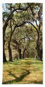 Oak Allee At Roseland Plantation  Beach Towel