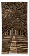 Oak Alley Bw Beach Towel