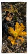 Oak Leaf And Acorn In Autumn Beach Towel