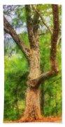 Oak On The Etowah Beach Towel