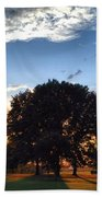 Oak Tree At The Magic Hour Beach Towel