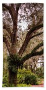 Oak Tree Beach Towel