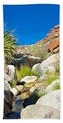 Oasis On Borrego Palm Canyon Trail In Anza-borrego Desert Sp-ca Beach Towel