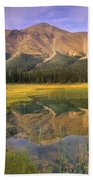 Observation Peak And Coniferous Forest Beach Towel