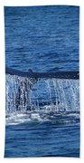 Ocean Dive Of The Humpback Whale Beach Towel