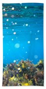 Ocean Garden Beach Towel