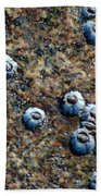 Ocean's Quilt Beach Towel