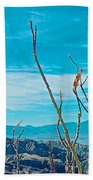 Ocotillo At Top Of Ladder Canyon With Salton Sea In Distance In Mecca Hills-ca Beach Towel