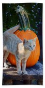 October Kitten #1 Beach Towel