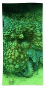 Octopus In The Sand Beach Towel