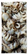Octopuses Beach Sheet