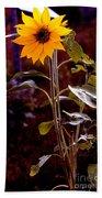 Ode To Sunflowers Beach Sheet