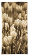 Of Tulips Past Beach Towel