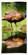 Oh My What A Handsome Pheasant Beach Towel