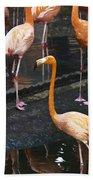 Oil Painting - Focus On A Single Flamingo Inside The Jurong Bird Park Beach Towel