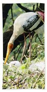 Oil Painting - Mama Stork Feeding Young Beach Towel