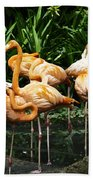 Oil Painting - Number Of Flamingos Inside The Jurong Bird Park Beach Towel