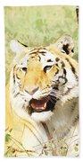 Oil Painting - An Alert Tiger Beach Towel