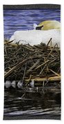 Oil Painting Nesting Swan Michigan Beach Towel
