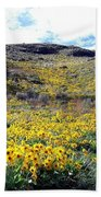 Okanagan Valley Sunflowers 1 Beach Towel