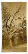 Old Haunted Tree In Sepia Beach Towel