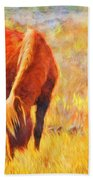 Old Mare Beach Towel