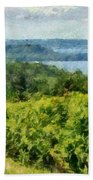 Old Mission Peninsula Vineyard Beach Towel