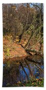 Old Park Canal In Autumn Beach Towel
