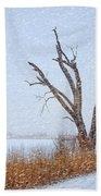 Old Tree In Winter Beach Towel