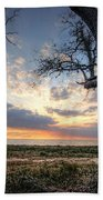 Old Tree Sunset Over Oyster Bay Beach Towel