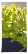 Olive Fluorescence Beach Towel