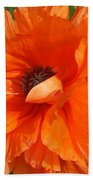 Olympia Orange Poppy Beach Towel
