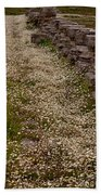 Olympia Ruins And Wild Flowers   #9679 Beach Towel