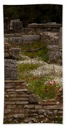 Olympia Ruins And Wild Flowers   #9684 Beach Towel