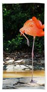 On Stilts Beach Towel