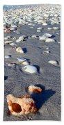 On The Beach Apple Murex Beach Towel