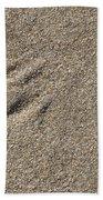 Shell On The Beach Beach Towel