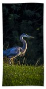 On The March Beach Towel