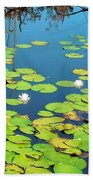 Once Upon A Lily Pad Beach Towel