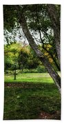One Autumn Day - Central Park - Nyc Beach Towel