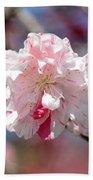 One Pink Blossom Beach Towel by Carol Groenen