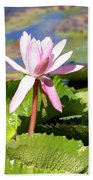 One Pink Water Lily Beach Towel