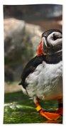 One Puffin Bird Art Prints Beach Towel