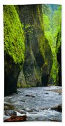 Oneonta River Gorge Beach Towel by Inge Johnsson